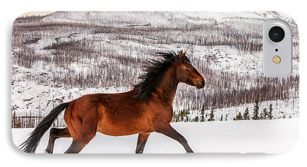Horse iPhone 7 Case - Wild Horse by Todd Klassy