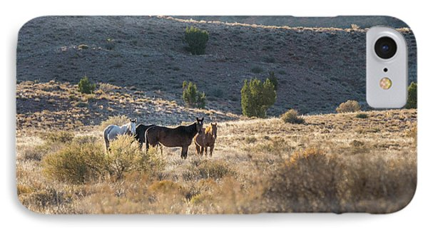 IPhone Case featuring the photograph Wild Horses In Monument Valley by Jon Glaser