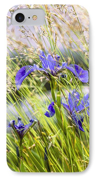 Wild Irises IPhone Case by Marty Saccone