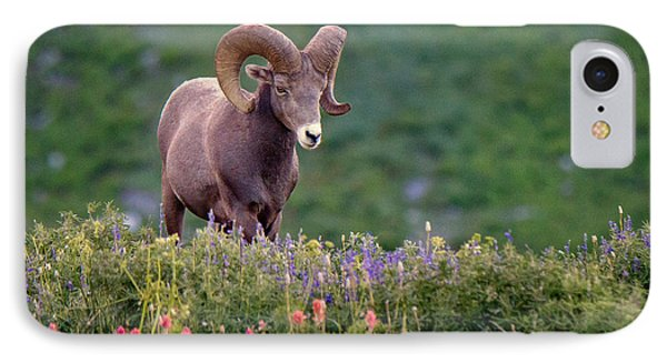 Rocky Mountain iPhone 7 Case - Wild Journey by Ryan Smith