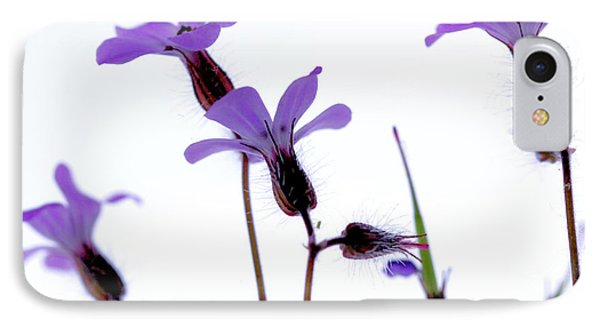 Wild Knotted Cranesbill IPhone Case