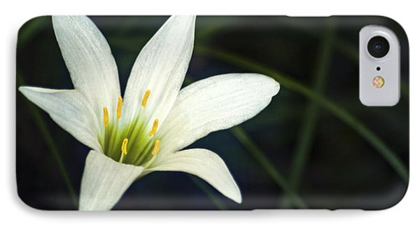IPhone Case featuring the photograph Wild Lily by Carolyn Marshall
