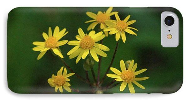 IPhone Case featuring the photograph Wild Meadow Daisies by LeeAnn McLaneGoetz McLaneGoetzStudioLLCcom