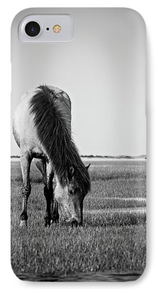 Wild Mustang IPhone Case by Bob Decker