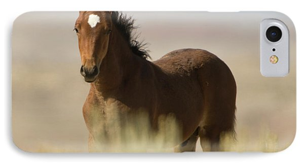 Wild Mustang Colt IPhone Case