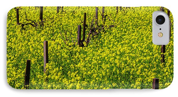 Wild Mustard Grass IPhone Case by Garry Gay