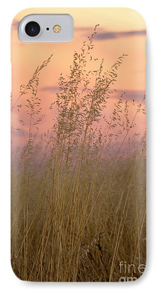 IPhone 7 Case featuring the photograph Wild Oats by Linda Lees