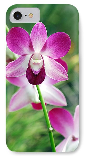 Wild Orchids Phone Case by Michael Peychich