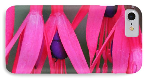 Wild Oregon Fuchsia  IPhone Case