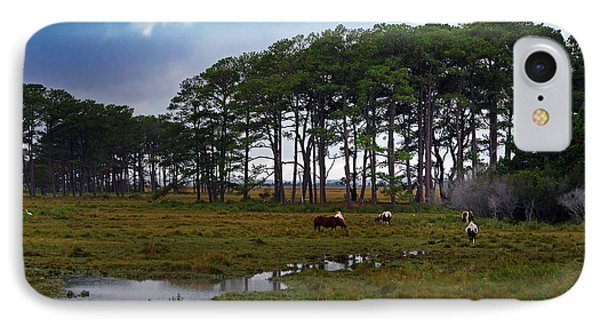 Wild Ponies Of Assateague IPhone Case by Lori Tambakis