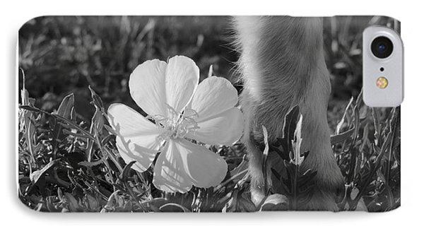 Wild Primrose With Dog's Foot IPhone Case by Jeannie Bushman
