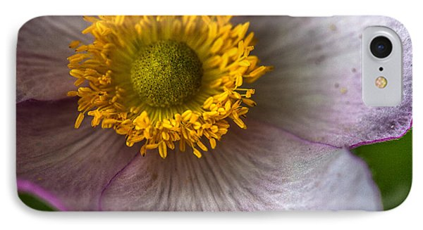 Wild Rose IPhone Case by Elena E Giorgi