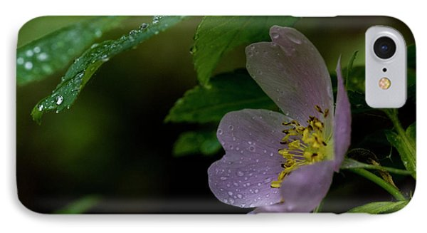 IPhone Case featuring the photograph Wild Rose With Shelter by Darcy Michaelchuk