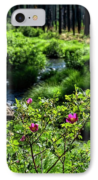 Wild Roses Riverside  IPhone Case by Saija Lehtonen