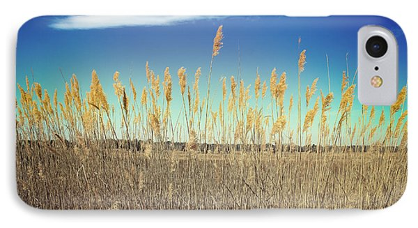 IPhone Case featuring the photograph Wild Sea Oats by Colleen Kammerer
