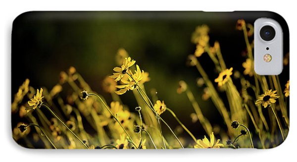 IPhone Case featuring the photograph Wild Spring Flowers by Kelly Wade