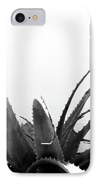 Wild Succulent-  By Linda Woods IPhone Case by Linda Woods