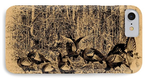 Wild Turkeys IPhone Case by Bill Cannon