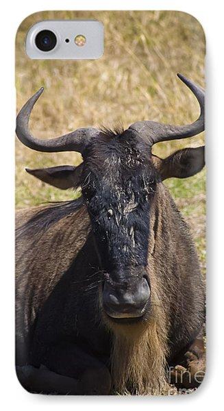 Wildebeest Taking A Break IPhone Case by Darcy Michaelchuk