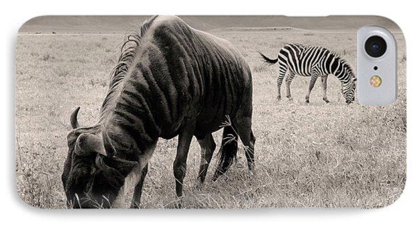 Wildebeest And Zebra IPhone Case