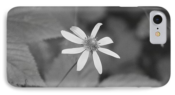 Wildflower IPhone Case by Eric Liller