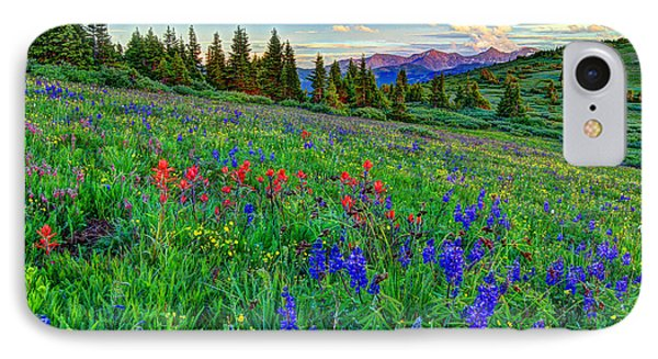 Wildflower Hill IPhone Case by Scott Mahon