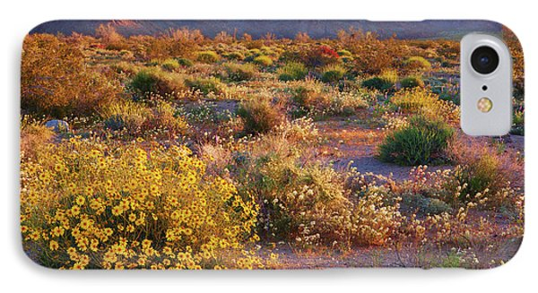 IPhone Case featuring the photograph Wildflower Meadow At Joshua Tree National Park by Ram Vasudev