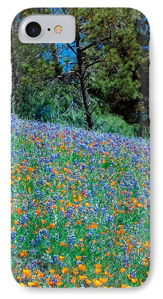 IPhone Case featuring the photograph Wildflower Meadow - Figueroa Mountains California by Ram Vasudev