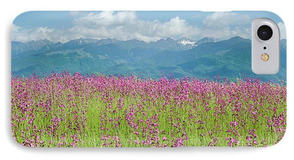 Wildflower Meadows And The Carpathian Mountains, Romania IPhone Case