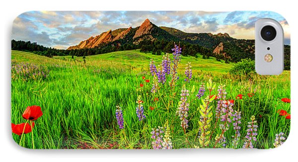 Wildflower Mix IPhone Case by Scott Mahon