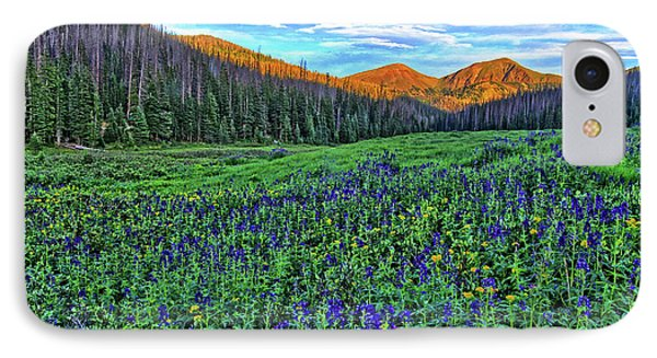 IPhone Case featuring the photograph Wildflower Park by Scott Mahon