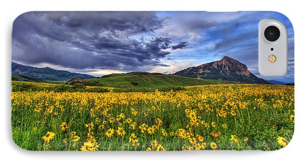 Wildflower Storm IPhone Case by Scott Mahon