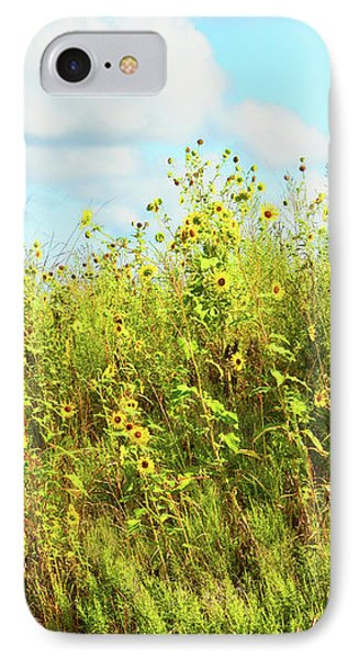 IPhone Case featuring the photograph Wildflowers Along A Country Road  Photography  by Ann Powell