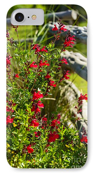 Wildflowers And Rail Fence IPhone Case by Thomas R Fletcher