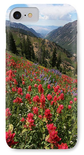 Wildflowers And View Down Canyon Phone Case by Brett Pelletier