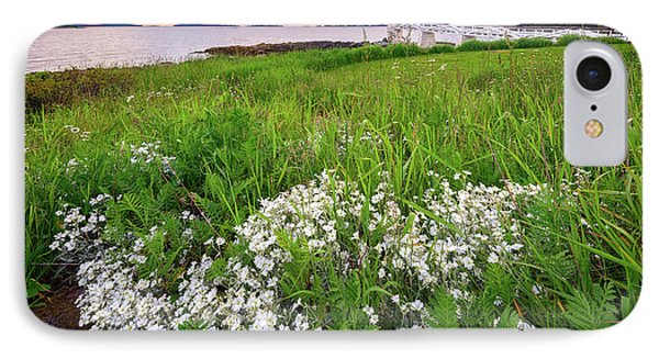 Wildflowers At Marshall Point IPhone Case by Rick Berk