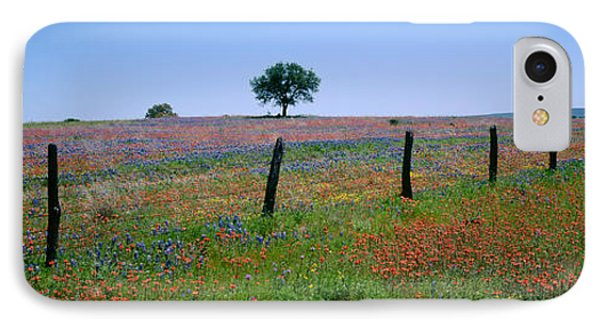 Wildflowers In A Field, Texas, Usa IPhone Case by Panoramic Images