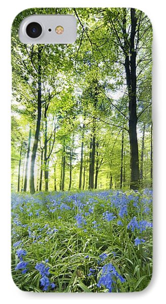 Wildflowers In A Forest Of Trees Phone Case by John Short
