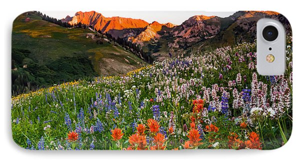 Wildflowers In Albion Basin. IPhone Case by Johnny Adolphson