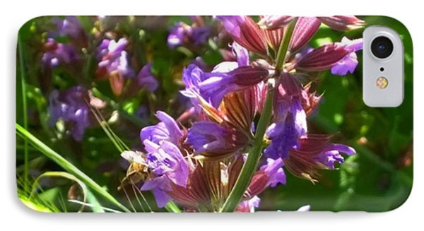 #wildflowers In #purple #country IPhone Case