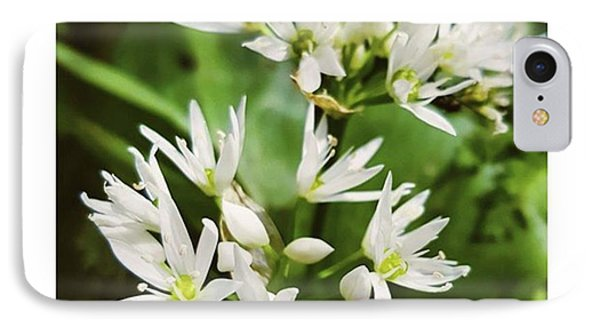 #wildgarlic #flower #woodland #walks Phone Case by Natalie Anne