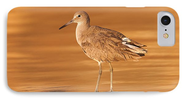 Willet Phone Case by Clarence Holmes