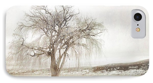 Willow Tree In Winter IPhone Case by Tara Turner