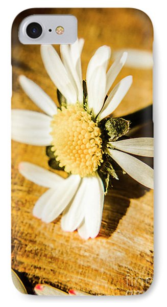 Daisy iPhone 7 Case - Wilt by Jorgo Photography - Wall Art Gallery
