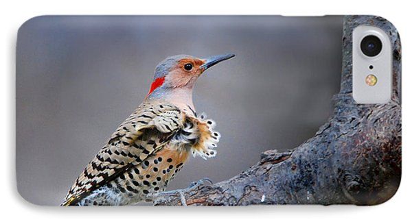 IPhone Case featuring the photograph Wind Blown Flicker by Nava Thompson