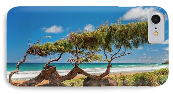 Wind Blown Tree IPhone Case by Brian Harig