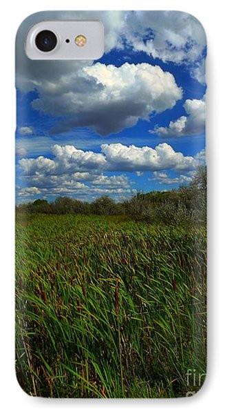 Wind In The Cattails Phone Case by Annie Gibbons