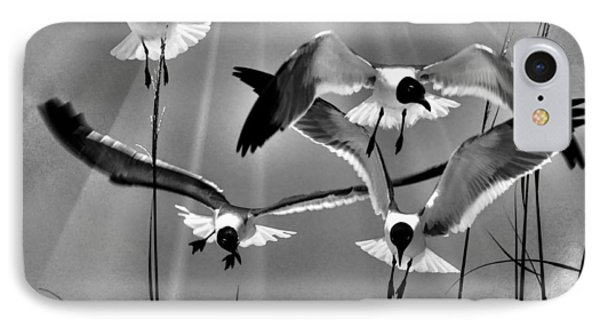 IPhone Case featuring the photograph Wind Swept Bw by Jan Amiss Photography