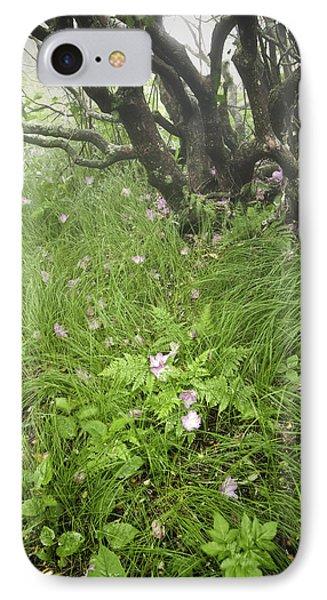 Windblown Grassy Craggy IPhone Case by Rob Travis