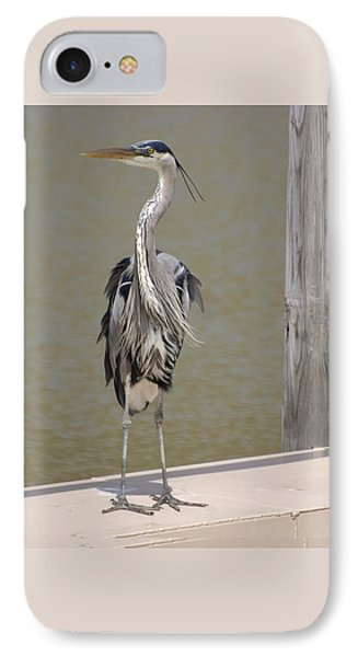 IPhone Case featuring the photograph Windblown Heron by Kathleen Stephens